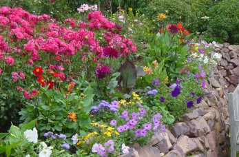 Blumen_Mix_2